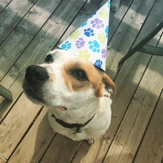 Carter's Celebration